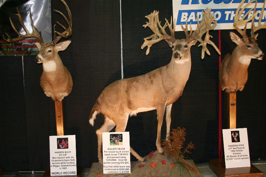 A'Fixing to Deer Hunt by Attending Local Trade Shows, August 15 (1/6)