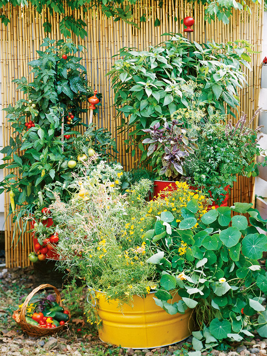 Container garden, this is how I want mine to look!
