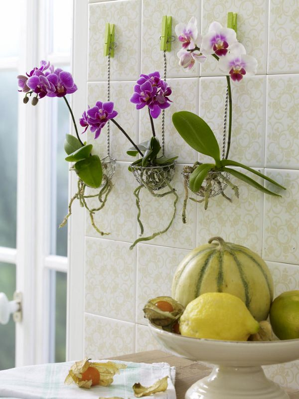Kitchen decoration to make your own
