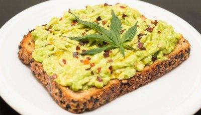 Marijuana Avocado Toast Recipe - Weed Edible Recipes