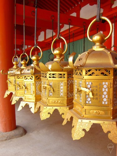 Kasuga-taisha's lanterns are lit on festivals in February and August.