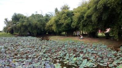 paya-indah-wetlands2_120008