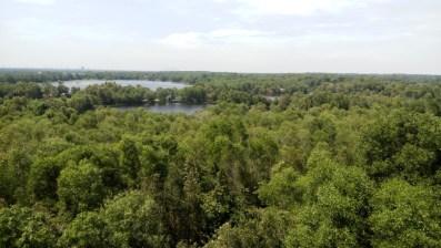 paya-indah-wetlands_130553
