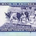 Eritrean Nakfa – R1.01
