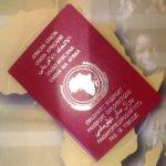 mauritius passport