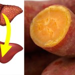 10 Foods And Supplements That Reverse Liver Disease