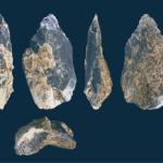 homo erectus handaxe