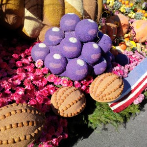 Purple flowers on rose bowl float