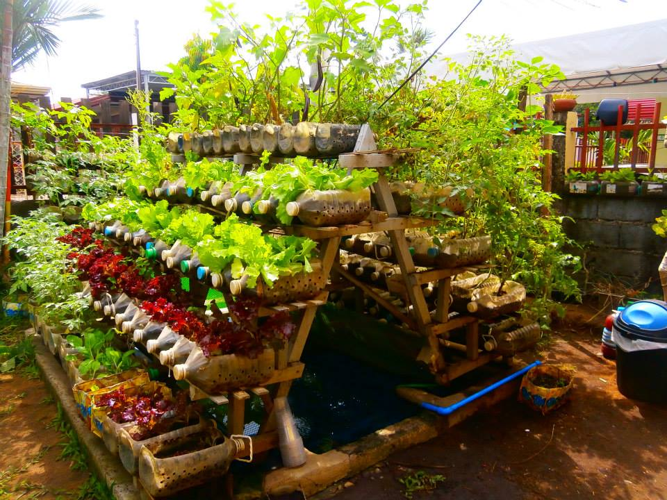 Building Raised Vegetable Garden Your Backyard
