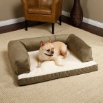Best Memory Foam Dog Beds