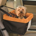 Best Dog Carrier For Car Reviews