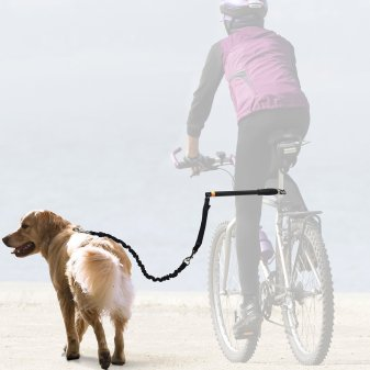 Best Dog Bike Leash Review