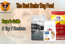 The Best Senior Dog Food (Buyer's Guide & Top 7 Reviews)