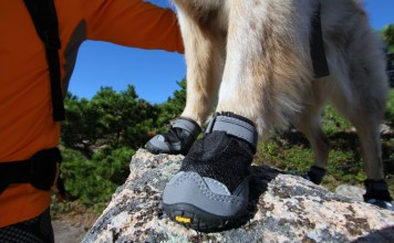 Best Dog Boots Reviews
