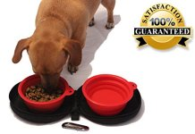 The Best Dog Bowls For Your Dog At Home