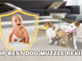 Best Dog Muzzles reviews