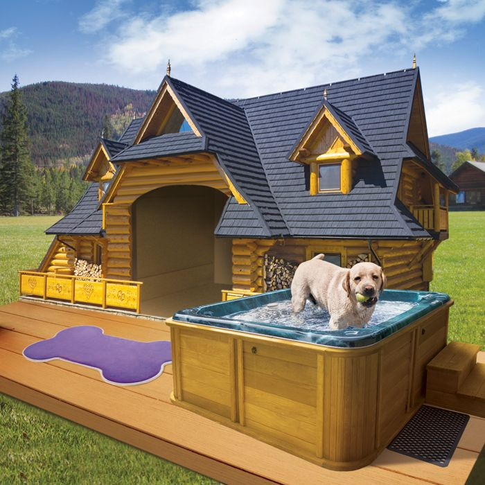 Top 15 Best Dog Houses For Indoors And Outdoors Reviews