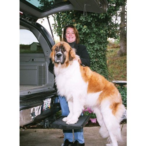 Big Dog Pet Steps Suv