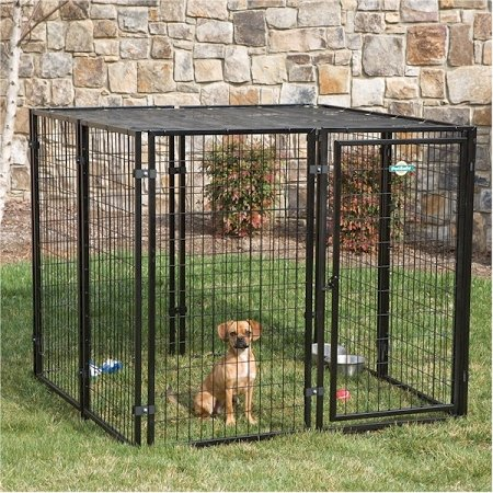 Sensational Best Outdoor Dog Kennel Reviews Best Top Care With Dogs Interior Design Ideas Ghosoteloinfo