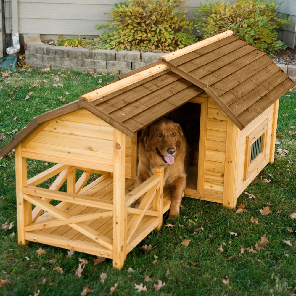 top 15 best dog houses reviews best top care with dogs