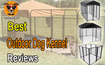 Best Outdoor Dog Kennel Reviews