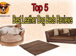 Top 5 Best Leather Dog Beds Reviews