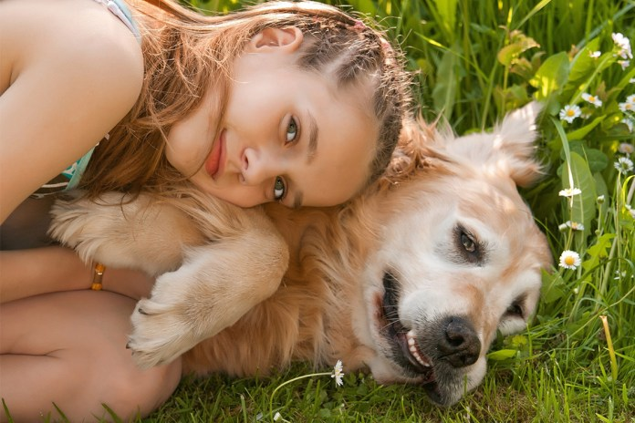 How to choose the best dog breed for your family