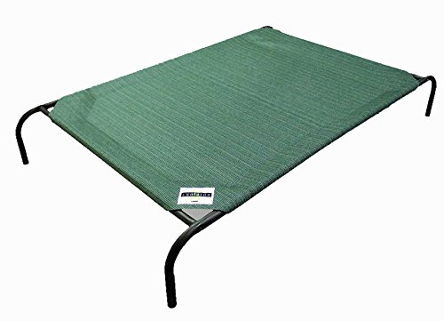 Top 10 Best Raised Dog Bed Reviews Best Top Care With Dogs