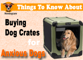 Things To Know About Buying Dog Crates for Anxious Dogs