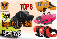 Top 8 Best Large Dog Life Jacket Reviews