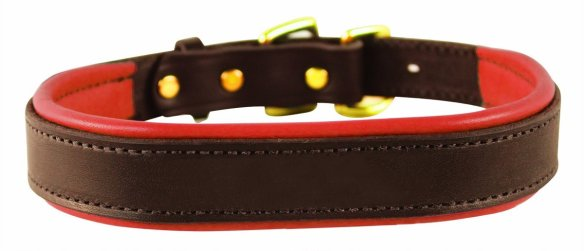 Best Leather Dog Collars Reviews 1