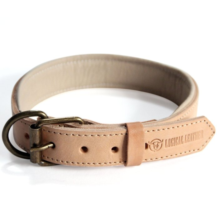 Best Leather Dog Collars Reviews 5
