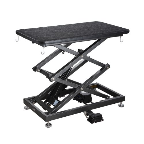 Cool Top 6 Electric Dog Grooming Table Reviews Best Grooming Interior Design Ideas Tzicisoteloinfo