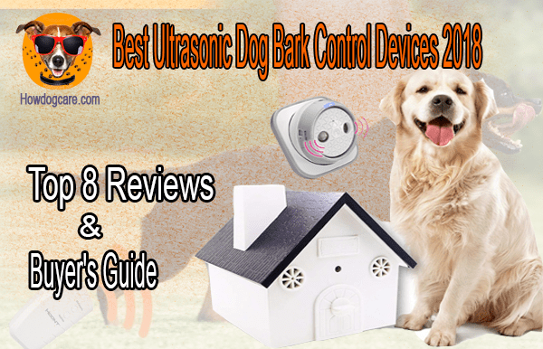 Protect Yourself from Vicious Dog Magic Dog Training and Anti Barking Device
