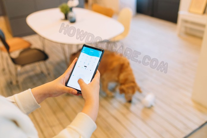 VARRAM SMART ROBOT FOR PETS REVIEW