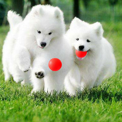 Bone Toys, Rubber Balls For Dogs