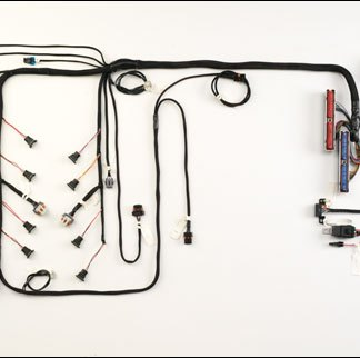 GM LS-Series Products Archives - Howell EFI Conversion & Wiring