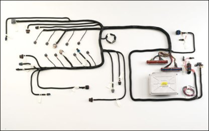 #HVL81TD - GEN III VORTEC HARNESS: 2002-07 8.1L  w/ 4L80E Transmission, Drive By Wire