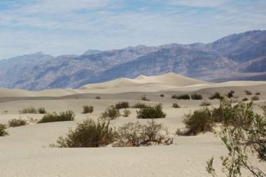 Piaszczyste wydmy - Mesquite Flat Sand Dunes