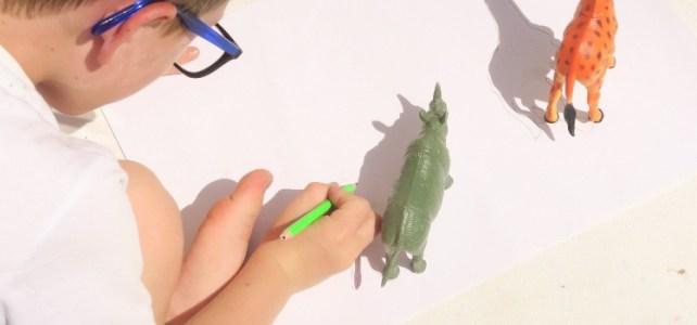 Dessiner les animaux grâce à ombre du soleil activité enfant
