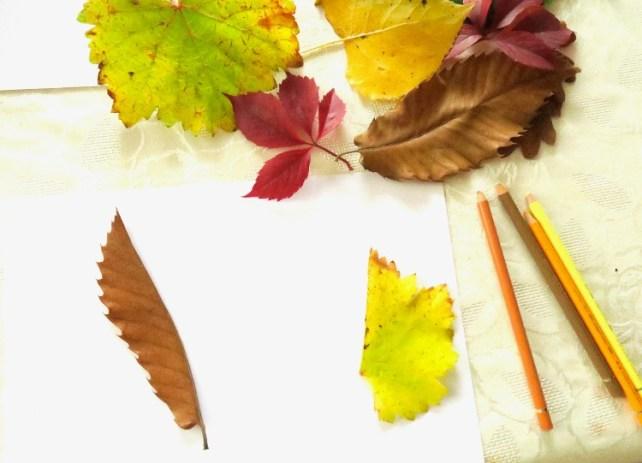 activité automne dessins de feuilles en miroir