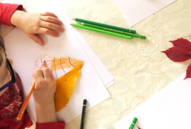 apprendre à dessiner uen feuille d'automne dessin en symétrie