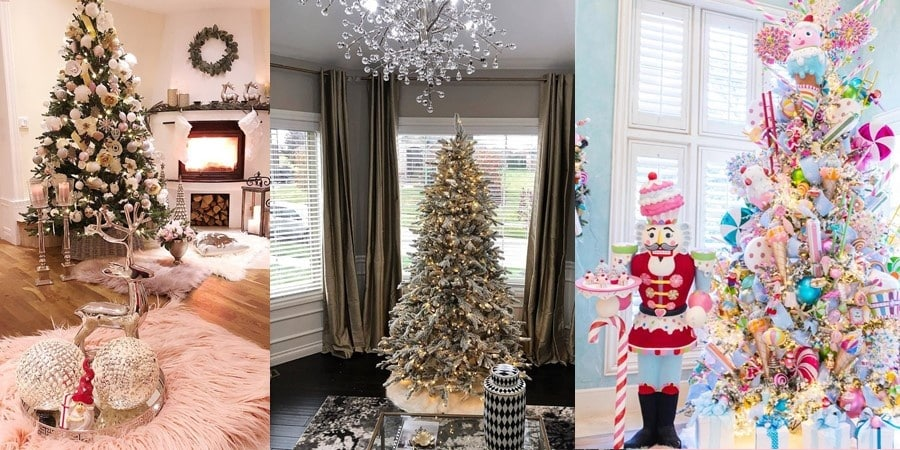 Christmas-Trees-20191123