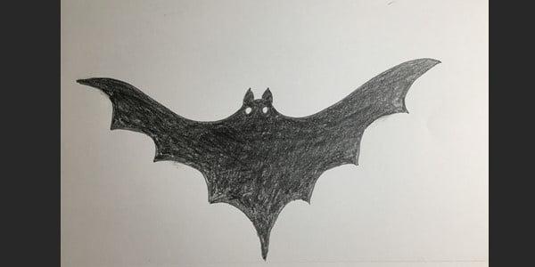 Draw-Bats-0200821