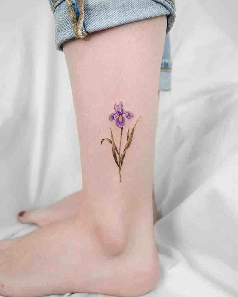 Iris Tattoo 2020082703 - 10 Best Iris Tattoo Designs and Meanings
