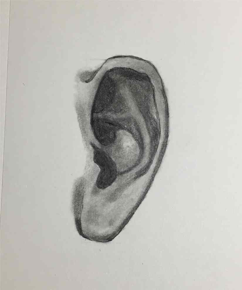 draw a ear 2020092009 - How to Easy Draw an Ear-Step by Step Tutorial