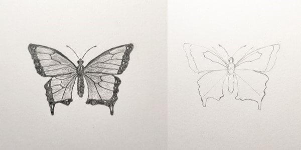 Draw-a-Butterfly-Easy-2020112900