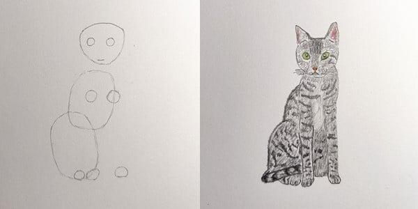 Draw-a-Cat-20201207