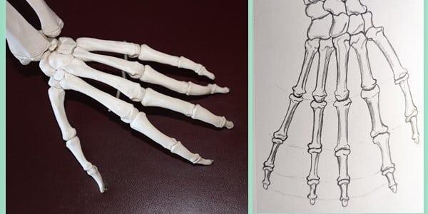 Draw-a-Skeleton-Hand-20201229