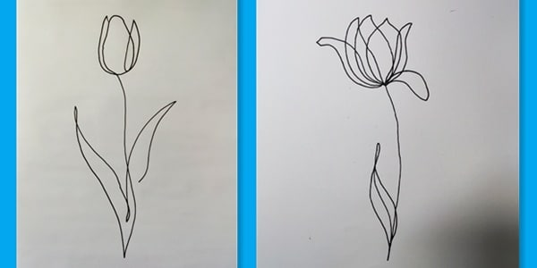 One line draw flowers-202104060266